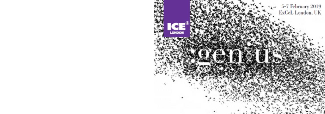 ICE 2019